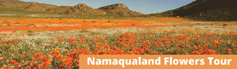 Namaqualand Tours